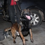Training Bajo, 22 januari 2014